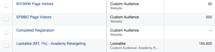 facebook-custom-audience-web-traffic